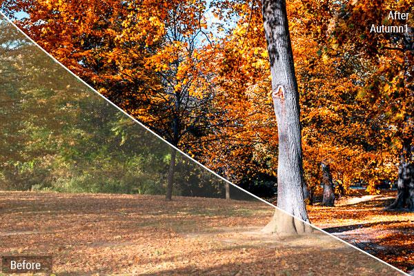 Preset Autumn 1