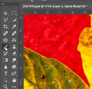 Photoshop Quick Mask - Brush Tool