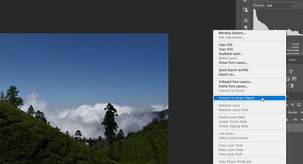 Landscape image smart object