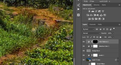 Landscape-image-masking