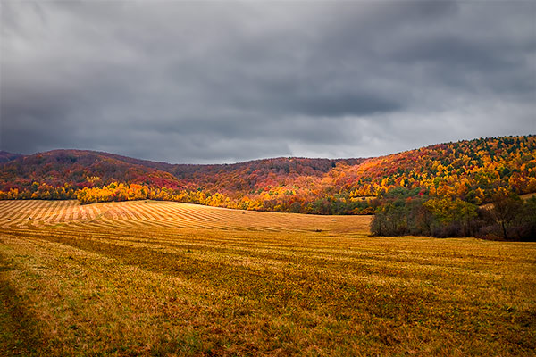How to edit fall pictures in photoshop