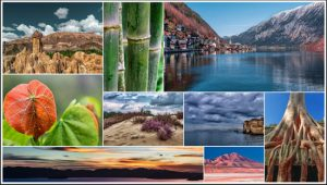 How to create a collage in Photoshop – step by step