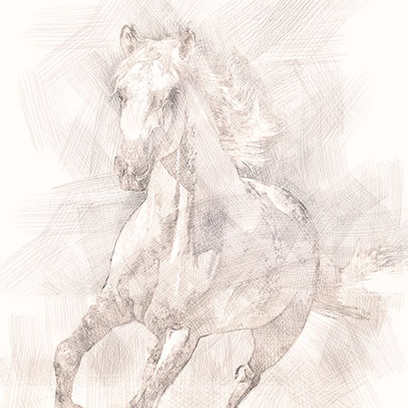 Digital Drawing – Horse sketch art